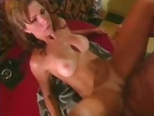 blowjob crazy cumshot facials fuck hardcore hot kitchen licking